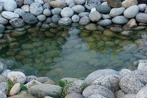 C mo hacer un estanque natural for Como hacer un estanque de hormigon